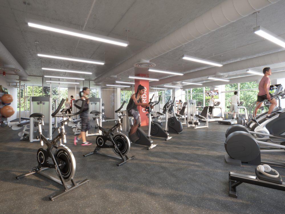 UD-gym